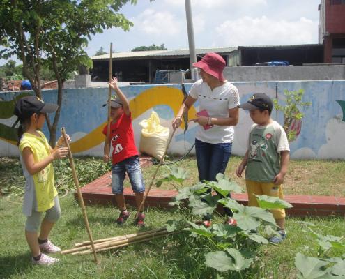 一甲的學生準備幫黃秋葵蓋新家。