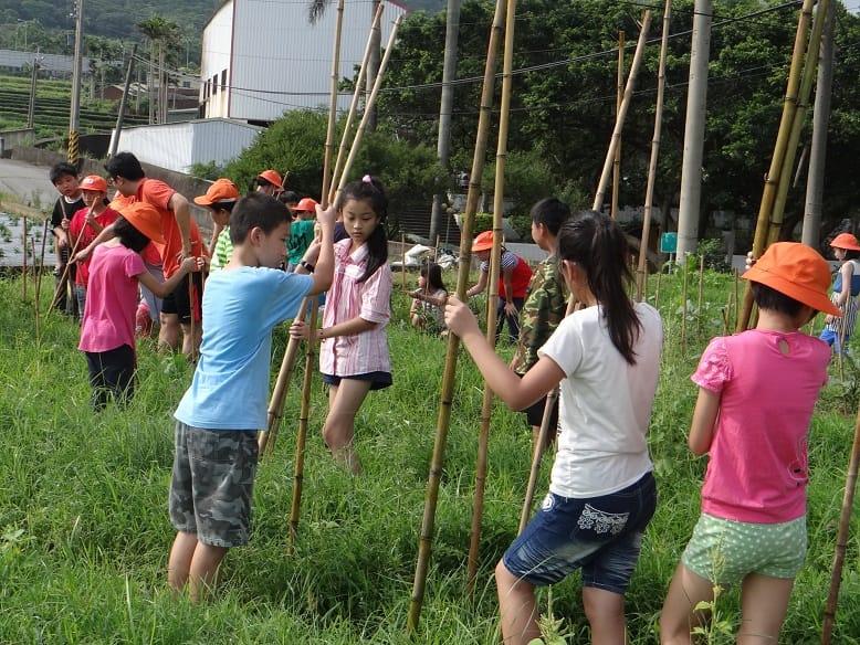 今天全校一起下田為校田除草及幫植物架竹竿做支撐........